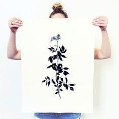 Botanicals by Mia Carameros