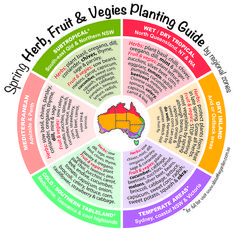 Spring Herb, Fruit & Vegies Planting Guide by temperate zones Australia. For mo… Spring Herb, Fruit & Vegies Planting Guide by temperate zones Australia. For more www.