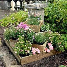 Raised Garden Planters, Raised Garden Beds, Raised Beds, Petunia Hanging Baskets, Pressure Treated Timber, Cascading Flowers, Smart Garden, Wooden Planters, Ornamental Plants
