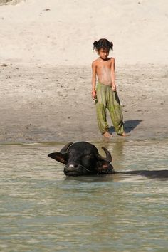SUN KOSI RIVER - Water By Nature - Picasa Web Albums