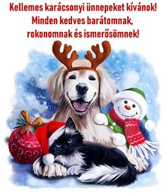 Share Pictures, Animated Gifs, Merry Christmas, Xmas, Happy New, December, Happy Birthday, Presents, Snoopy