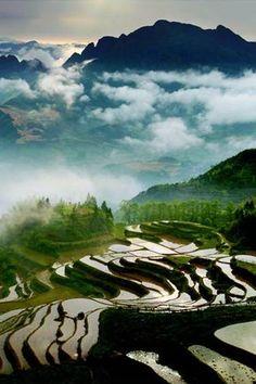 Zhejiang, Yunhe Rice Terraces, 云和梯田,浙江 photo via Discover China.
