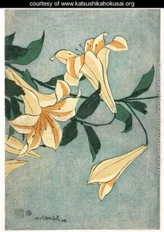Lys Oranges Et Roses - Katsushika Hokusai - www.katsushikahokusai.org