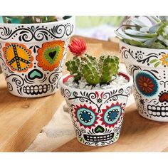 Plaid® Daisy Eyes Sugar Skull Planters