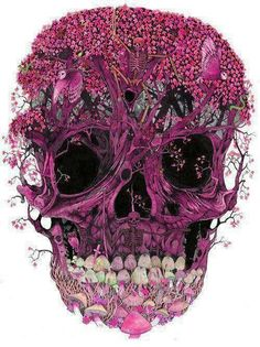 Intricate floral pink skull drawing