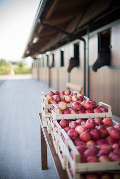 Take a bite out of this delicious decor: http://www.stylemepretty.com/destination-weddings/2014/12/10/horse-farm-wedding-in-italy/ | Photography: LoveFolio Wedding Photography - www.lovefolio.biz