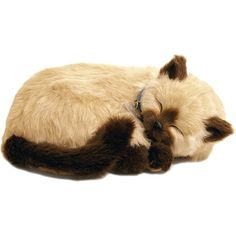 Perfect Petzzz Gato Tan Siamês - Imex