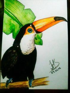 Tucano em aquarela