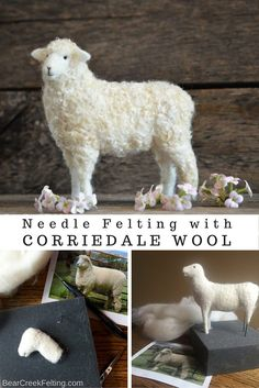 Wondering if felting Corriedale wool is recommended? Follow along as Needle Felting Artist Teresa Perleberg Felts through the sheep breeds.