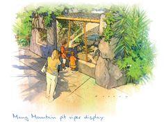 San Diego Zoo - Panda Trek Concept Sketch