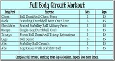 full body circuit workout with a description of horizontal vs vertical circuits