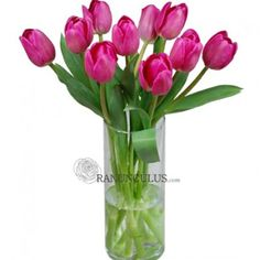 Bella Wedding Flowers ships Fresh wholesale pink tulips direct to your doostep at wholesale prices. Do it yourself flower arranging with fresh wedding tulips is effortless to create elegant arrangements including wedding bouquets or table centerpieces Pink Tulips, Tulips Flowers, Tulip Wedding, Wedding Flowers, Most Popular Flowers, Bella Wedding, Wedding Shower Invitations, Reception Table, Table Centerpieces