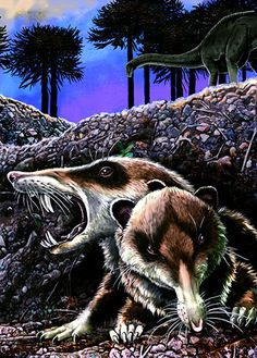 An ancient mammal that walked the Earth 94m years ago in the age of the dinosaurs was brought back to life in the pages of the journal Nature, whose press release described it as a 'saber-toothed squirrel'