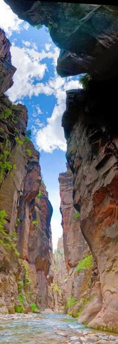 Gotta do this hike someday! Zion National park, Utah USA.