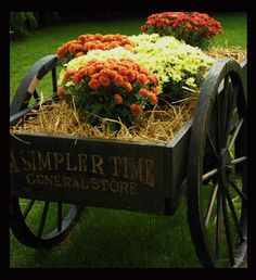 could be done in a wheelbarrow too. Harvest Time, Fall Harvest, Mums The Word, Old Wagons, Flower Cart, Happy Fall Y'all, Autumn Day, Fall Season, Fall Halloween