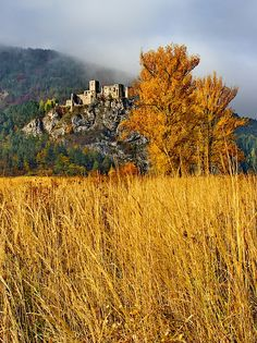 Autumn time and medieval ruin castle Strecno Pictures For Sale, Colorful Pictures, Fine Art America, Medieval, Fine Art Prints, Sunrise, Castle, Country Roads, Autumn