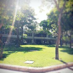 Campus Uninorte