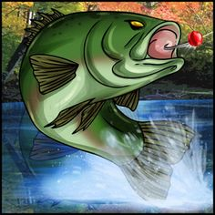 how to draw a bass fish Australian Bass, Bass Fishing Tips, Fishing Basics, Fly Fishing, Water Animals, Shadow Art, Step By Step Drawing, Freshwater Fish, Painted Rocks