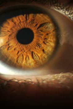 het menselijke oog in al zijn schoonheid.  the #human #eye in all it's #beauty  #iris