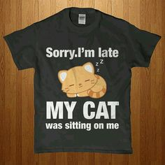 Sorry I'm late my cat was sitting on me.
