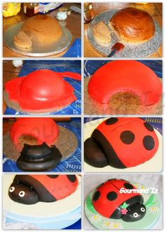 step by step ladybug