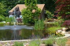 All sizes | Garden pond with a water jet, wooden bridge, Lavandula and achillea | Flickr - Photo Sharing!