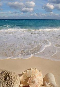 The beach life nature love I Love The Beach, Pictures Of The Beach, Beach Scenes, Ocean Beach, Ocean Pics, Bali Beach, Sunny Beach, Ocean Waves, Beach Bum