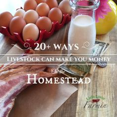 """Living on a working homestead is rewarding in itself. However, producing an income from that hard work is a whole nother level of awesome!. One the questions I get asked frequentlyis """"How could one make money on the Homestead?"""" """"What can you produce and sell for profit?"""" The Answer, almost"""