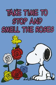 Smell the roses..