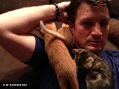 "Nathan Fillion's photo: ""Yep. Kittens."""