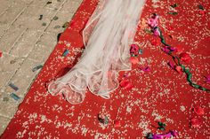 #velos #velosdenovia #vestidosdenovia #fabianluque #fotografoscordoba #noviaselegantes #fotografosdeboda #noviasdecordoba #cordoba #boda #higarnovias Bridal Veils, Bridal Gowns, Cordoba, Boyfriends, Wedding