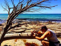 https://flic.kr/p/B6pUih | @frostcovered catching some great snaps at Shelly Beach.  Magic day for a jog and a swim ! #upsticksandgo #shellybeach #greensbeach #travel #travelpics #michfrost #instagood #instagram #instabeach #instatravel #exploring #tassie #tasmania #tassiecoast
