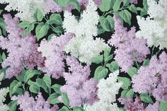 1950's Vintage Wallpaper - Floral Wallpaper with Purple and Gray Lilacs on Black