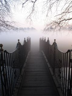 A leap of faith, step into the mist and see what lies ahead.
