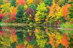 New print available on lanjee-chee.artistwebsites.com! - 'Autumn with colorful foliage and water reflection 16' by Lanjee Chee - http://lanjee-chee.artistwebsites.com/featured/autumn-with-colorful-foliage-and-water-reflection-16-lanjee-chee.html via @fineartamerica