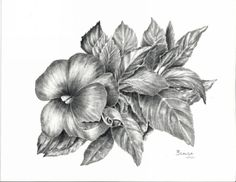 One In A Crowd graphite floral by Brenda Hill