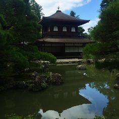 Доброе утро из Серебряного павильона #Гинкакудзи! Киото сегодня особенно прекрасен - как всегда после тайфуна! #тайфун #киото #осень #серебро #япония
