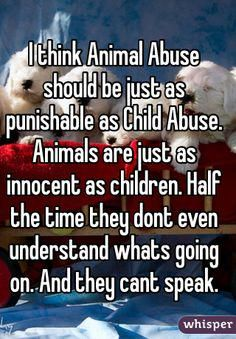 I think animal abuse should be just as punishable as child abuse. Animals are just as innocent as children. Half the time they don't even understand what's going on. And they can't speak. 4/3