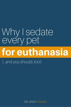 Sedation is one of the major controversies in end-of-life care medicine. When I talk to veterinarians Veterinary World, Veterinary Studies, Veterinary Medicine, Utrecht, Dog Illnesses, Vet Assistant, Pet Vet, Dog Insurance, Veterinary Technician