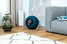 Bring a touch of Parisian chic to your home with this beautiful Cat Ball bed by French brand, Meyou Paris - an instantly iconic piece of designer cat furniture. Modern Cat Furniture, Pet Furniture, Furniture Design, Interior Natural, Paris Cat, Paris Design, Poster S, Design Your Home, Bed Design
