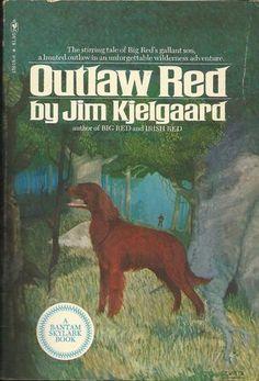 Outlaw Red by Jim Kjelgaard book dog