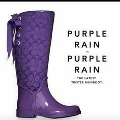 Coach purple rain boots