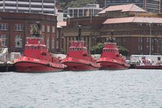 Tugboats, Wellington, New Zealand