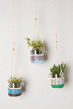 Lupine Hanging Planter