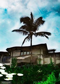 Maui---saw this house when I lived in Maui so gorgeous wish I could own it
