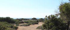 Agrotourism in Mallorca - Fishermen cottages Majorca, Cottages, Philosophy, Rustic, History, Building, Apartments, Tourism, Farm Cottage