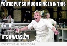 funny gordon ramsey meme so much ginger its a weasley
