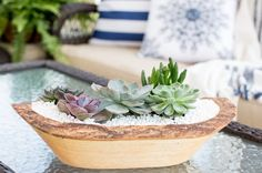 craftberry bush wooden bowl