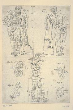 proporcje - Herkules - Polska grafika