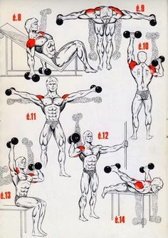Personal Trainer Shoulder Workout is part of Bodybuilding workouts - Fitness Workouts, Gym Workout Tips, Dumbbell Workout, Easy Workouts, At Home Workouts, Fitness Tips, Fitness Motivation, Traps Workout, Workout Body